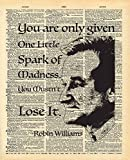 Robin Williams Quote | One Spark of Madness...