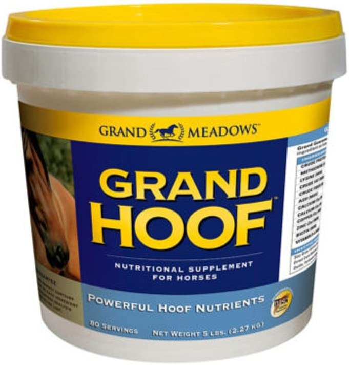 Grand Hoof Horse Biotin Amino Cash special price 5 Maple Acids Flavored Supplement Excellence