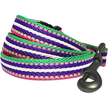 Blueberry Pet 8 Colors 3M Reflective Multi-Colored Stripe Dog Leashes