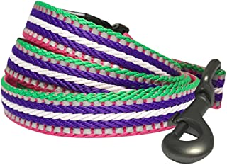Sponsored Ad - Blueberry Pet 8 Colors 3M Reflective Multi-Colored Stripe Dog Leashes