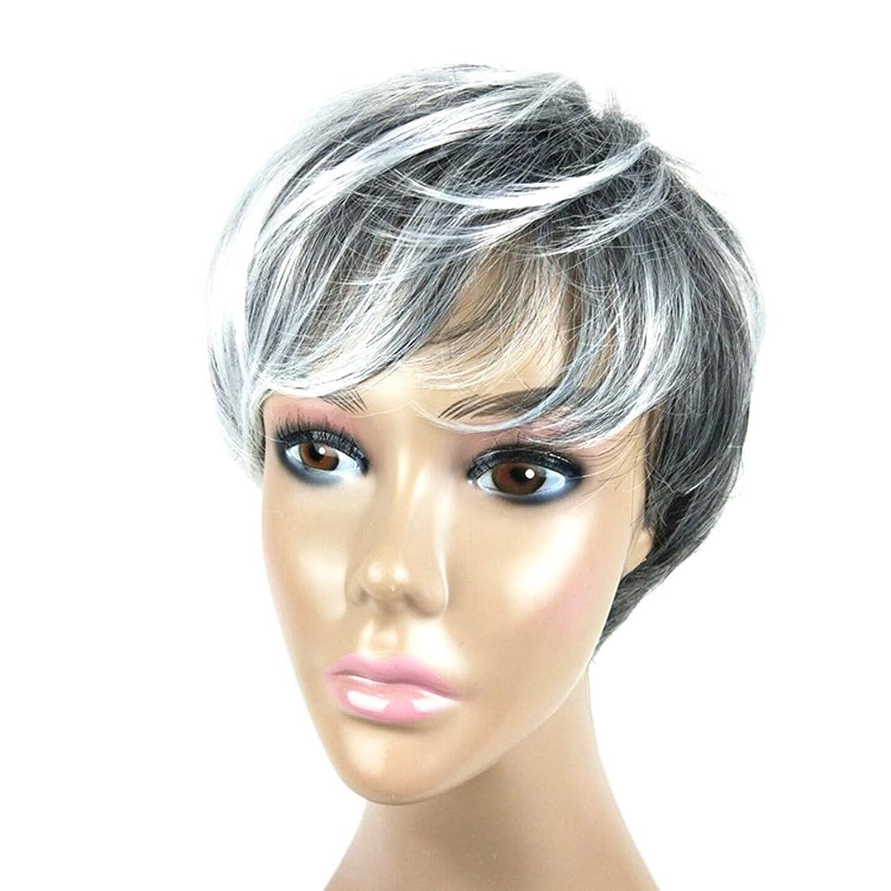 小数病んでいる上記の頭と肩Summerys メンズショートヘア白黒グラデーションカラーウィッグ