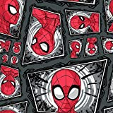 DC Comics Stoff – Spiderman-Masken – SC304 – 0,5