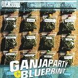 Ganja Party/Blueprint (Mr.Rango,Morodo..