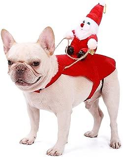 Best poodle dog costume Reviews