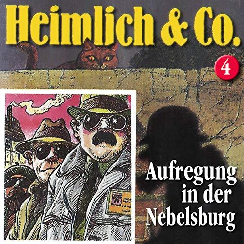 Aufregung in der Nebelsburg audiobook cover art