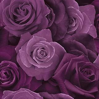 Austin Rose Wallpaper Purple Arthouse 675601