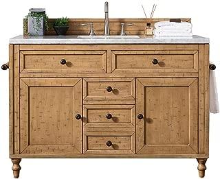 48 in. Single Vanity Cabinet in Copper Cover Finish