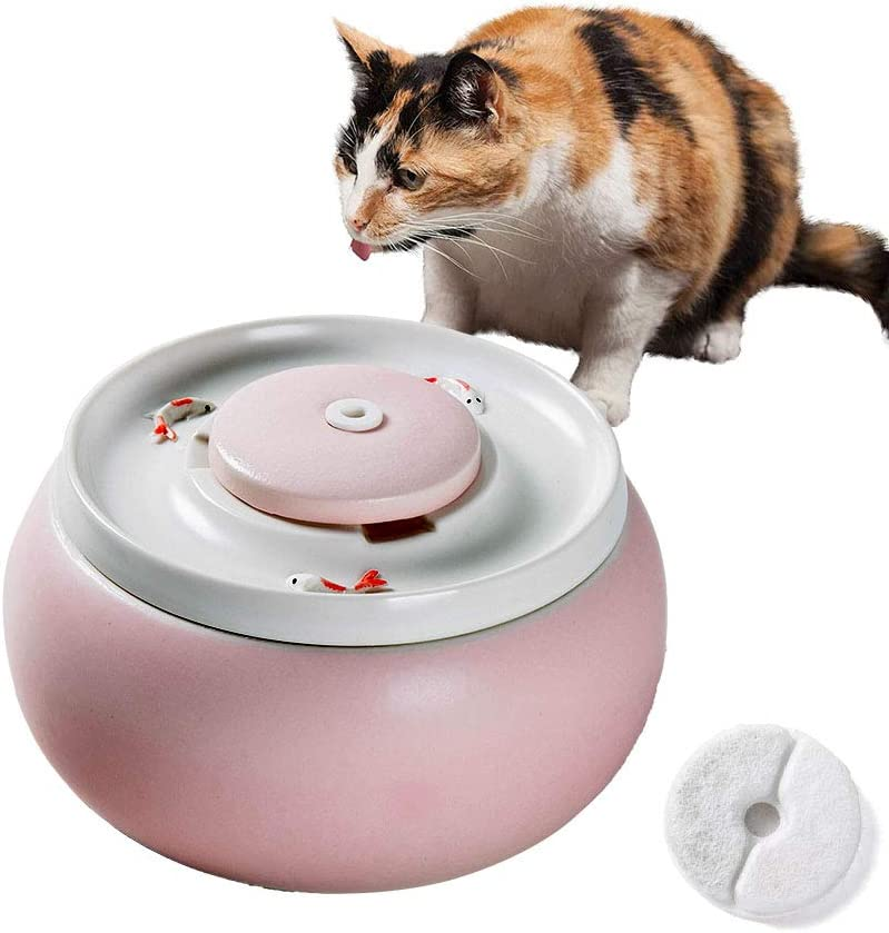 RUIGPRO Ranking TOP2 Ceramic Water Cash special price Dispenser for Drink Automatic Cats and Dog