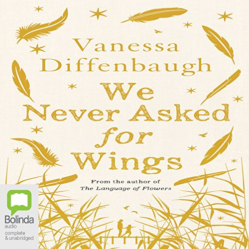 We Never Asked for Wings audiobook cover art