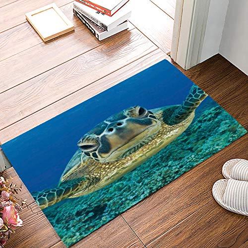 QLIYT Fußmatten Sea Turtle Dirt Debris Mud Trapper Stiefel Schuhe Scraper Zubehör-Sets Area Runners Natürliche Teppiche Wohnzimmer Vorne