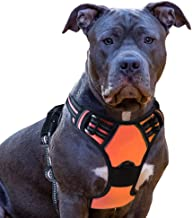 Eagloo Dog Harness No Pull, Walking Pet Harness with 2 Metal Rings and Handle Adjustable Reflective Breathable Oxford Soft...