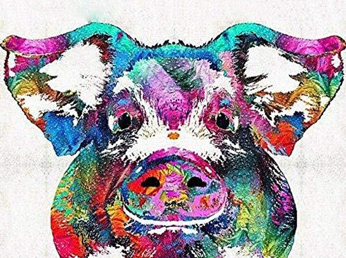 LHOME Malen nach Zahlen for Erwachsene Schwein Kopf Farbe 40x50cm Kinder DIY Ölgemälde Anfänger Leinwand Kunst Senioren Abstrakt Geschenke Moderne Hauptdekoration aus Holz gerahmt