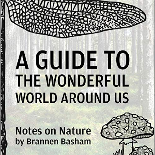 A Guide to the Wonderful World Around Us audiobook cover art