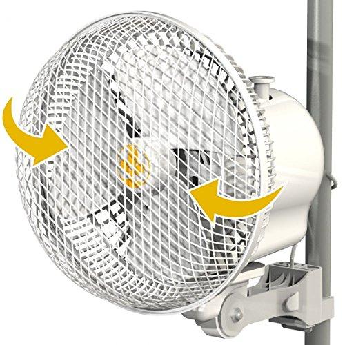 Monkey Fan Secret Jardin 20W 17 cm 2-Stufen Oscillating
