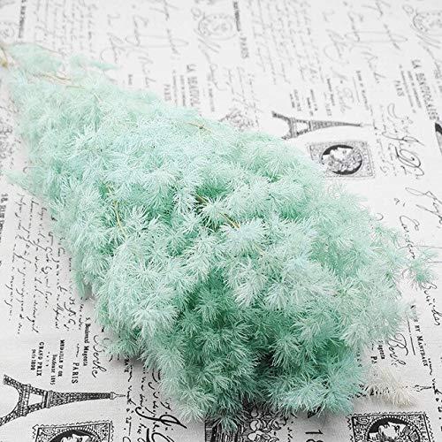 Miwaimao 80gram/lot 50cm natrual Fleur Eternelle Plant Asparagus Myriocladus pine tree peng lai pine Christmas Decorations