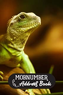 Mobnumber Address Book: Address Book Dragon Lizard Pet Lover Journal Modern for Women and Men with Paperback Cute Cover Design | 120 Pages 6 x 9 inch ... E-mail Fax Work Place Birthday and Notes