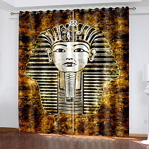 HAOGG Cortina Habitacion Opaca Termica Marrón África Retrato Arte 280X260Cm 2 Piezas...
