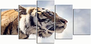 XINGAKA Paintings Modern Canvas Painting Wall Art Pictures 5 Pieces, Bengal Tiger Portrait Against Sky,Wall Decor HD Printed Posters Frame
