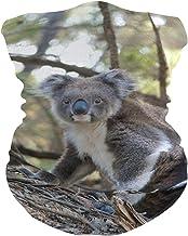 PINLLG Dierlijke Koala Marsupial Grijze Beer Bandana met Filter Gezichtsdekking Wasbare Hoofdband voor Stof Sport Magische...