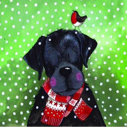 Alex Clark Kerst Sjaal Kerstkaart Pack (Pack van 5 kaarten) Hond dragen Kerstmis Sjaal Afbeelding