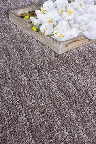 Barbara Becker Hochflor Langflor Shaggy Touch Taupe