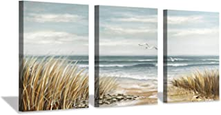 """Hardy Gallery Abstract Beach Picture Wall Art: Coastal Grass Seascape Artwork Print on Canvas for Walls (12""""x16""""x3pcs)"""