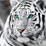 FHGFB Tigre Diamante Pintura Diamante Bordado Animal Rhinestone Resina Diamante Mosaico Arte Manualidades costura-40x40cm Sin Marco
