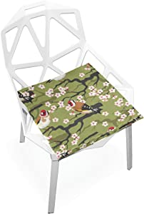 gaopeng Seat Cushion Chair Cushions Covers Set Birdb And Floral 2 Decorative Indoor Outdoor Velvet Double Printing Design Soft Seat Cushion 16 x 16
