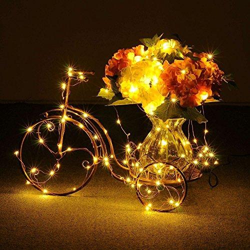 ILOVEDIY 10M 100 LEDs Kupferdraht LED Kupfer Lichterkette, Lichterketten, Warmweiß Weihnachtsleuchte, sternenklar und romantisch Lampenkette für Weihnachten