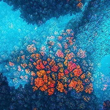 Phoenix Bubbles