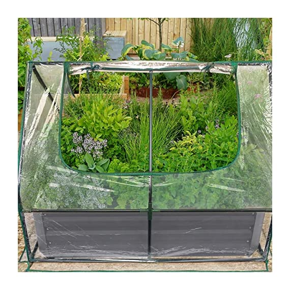 Quictent 49''x37''x36'' Extra-Thick Galvanized Steel Raised Garden Bed Planter Kit Box with Greenhouse 2 Large Zipper… 8 √【Dual Use Raised Bed】Use the raised garden bed and greenhouse together to keep plants warm and growing in winter and spring. Or move the greenhouse to keep other small plants to grow, do as your need. Give you more freedom to use these two parts. √【Extra-thick Reinforced Galvanized Steel】--- 0.5mm thickness galvanized side, 1.0mm galvanized sheet for corner, 11.8inch in height, perfect size with extra-thick steel, stable for using at least 5 years. √【Eco-friendly Galvanized Paint】--- Use eco-friendly galvanized paint, efficiently prevent rust; And with the advanced dark grey, the most popular color, give your garden more beauty. Also never worry about that pest and rain damage the wood garden bed; galvanized steel garden bed provides lasting use and no discoloration.
