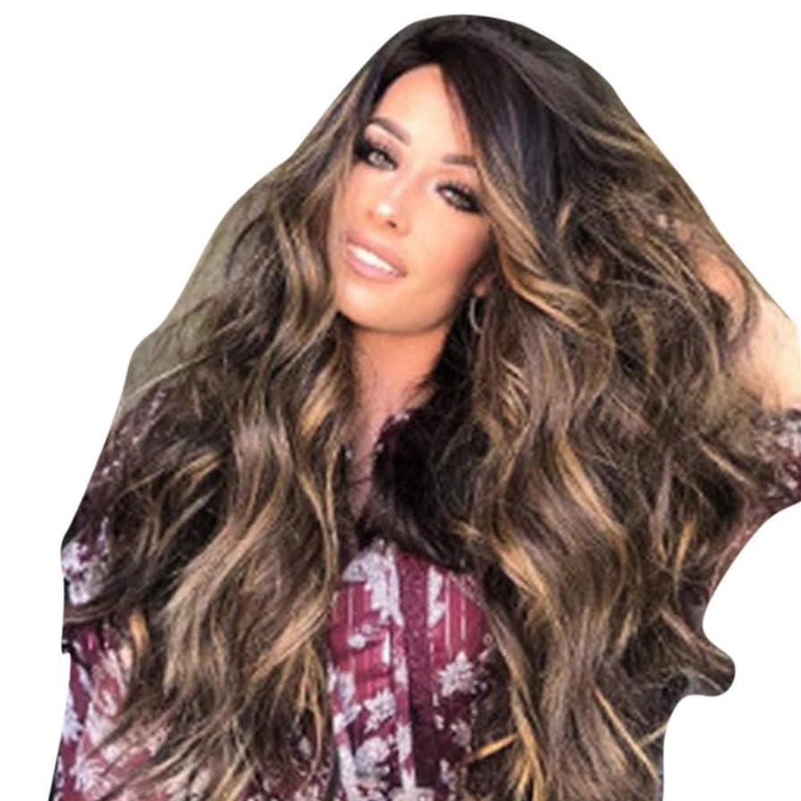 価値そばに不正直WASAIO 女性金髪フルウィッグレディース変態カーリーウィッグ65-70cm (色 : ブラウン)