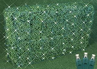 Commercial Grade LED Net Light Set, 4' X 6', Warm White, Green Wire, 100 Light