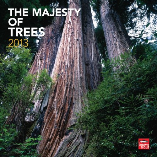 Majesty of Trees 2013 - Majestätische Bäume - Original BrownTrout-Kalender