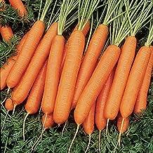 nelson carrots