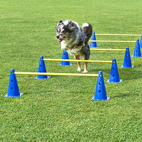 Unbekannt Kegel-Hürden 5er Set, blau/gelb, mit Tragetasche, für Agility - Hundetraining