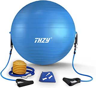 THZY バランスボール 65cm エクササイズボール ヨガボール 2WAY PVC フィットネスボール フットポンプ トレーニングチューブ付 ジム/ホーム/オフィスなどに適用 (65cm)