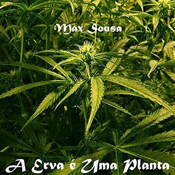 A Erva é Uma Planta (Remastered)