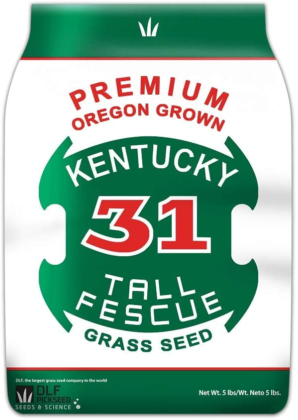 Premium Oregon Grown Kentucky 1 year warranty 31 Easy-to-use Tall Fescue LBS 5 Grass Seed