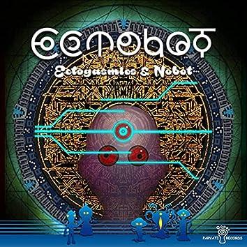 Parvati Records Ectobot