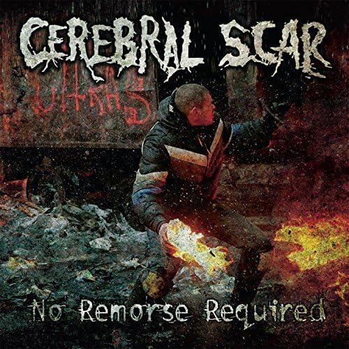 Cerebral Scar