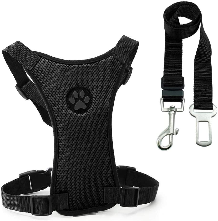 Memphis Mall Dog seat Belt and Leash Import pet Harness Car Safety Set