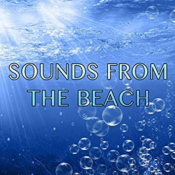 Sounds from the Beach