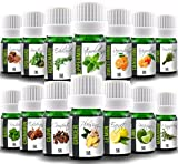 Aroma2Go – Cooking Set of 14 Natural Pure Plant-Based Essential Oils...