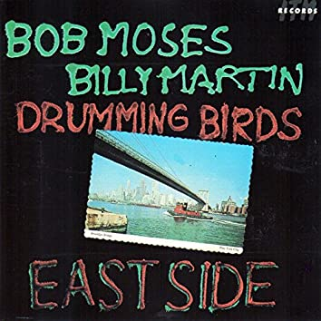 Drumming Birds (East Side)