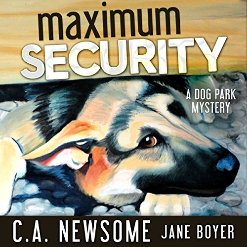 Maximum Security  cover art