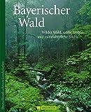 Bildband Bayerischer Wald: Wilder Wald, sanfte Höhen und historische Städte. Über 250 beeindruckende Bilder von Passau über Straubing an der Donau und ... im Wald.