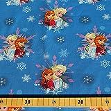 Loopomio Jersey Stoffe Frozen Anna und ELSA blau 0,50m x VB