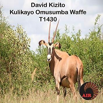 Kulikayo Omusumba Waffe