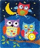Kits ganchos cierre Alfombras, Crochet Kits ganchos Tres búhos noche Herramientas DIY Fabricación alfombra Kits ganchillo Artesanía Tejido punto Bordado Decoración para niños adultos,105*75cm/41*29in